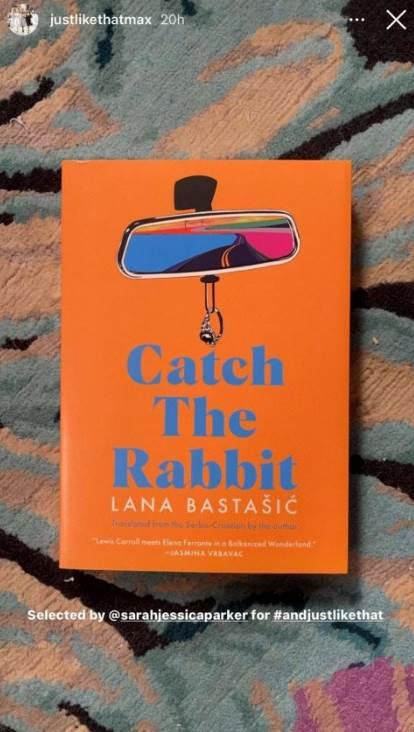 knjiga uhvati zeca